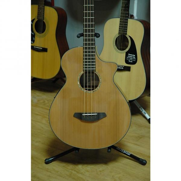Custom Breedlove Solo Bass - Acoustic Bass #1 image