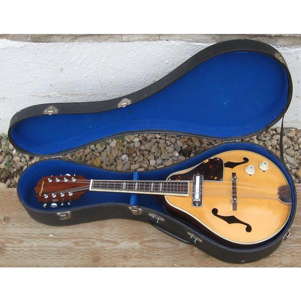 Custom Conquerer Electric Mandolin 60s/70s Natural #1 image