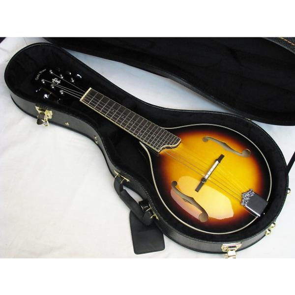 Custom GOLD TONE GM-6 6-string Mandolin style GUITAR new GM6 Solid Top w/ CASE #1 image