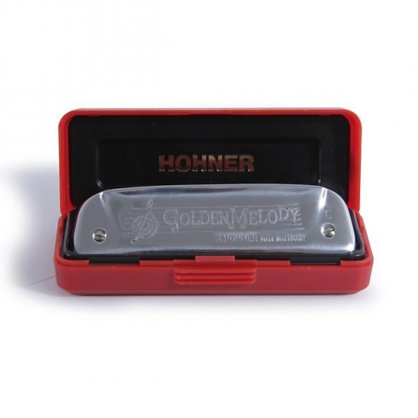 Custom Hohner  Golden Melody Key of C silver #1 image