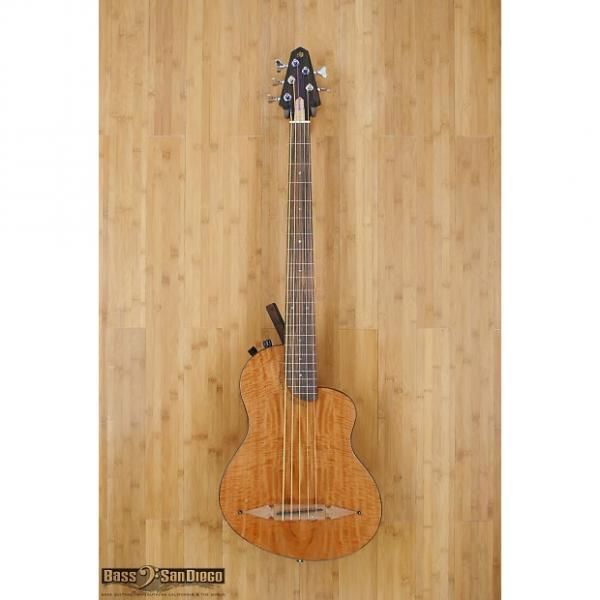 Custom Rick Turner Renaissance RB5FL 5 String Fretless Bass #1 image
