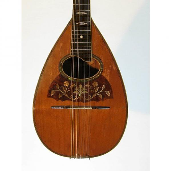 Custom Vega Roundback Mandolin circa 1920 (Vintage) #1 image