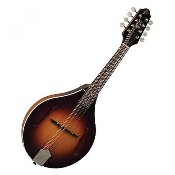Custom The Loar Grassroots Mandolin LM-170 #1 image