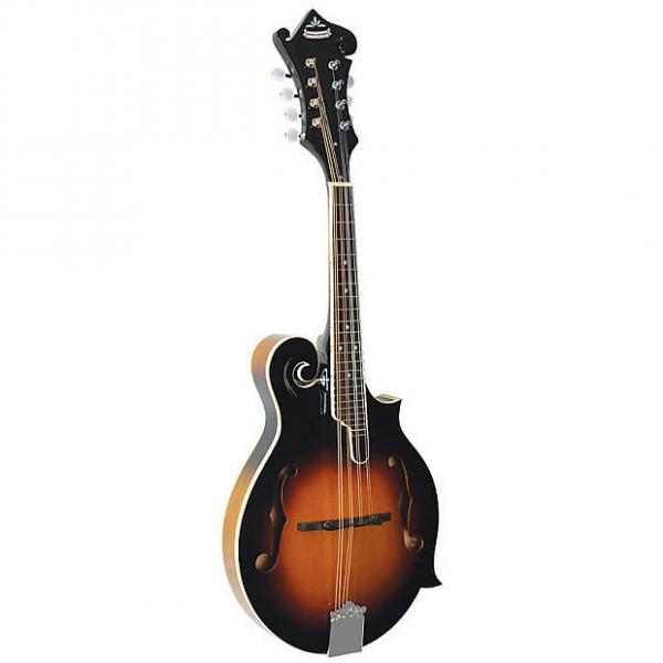 Custom Morgan Monroe All Solid F-model Mandolin - No Case #1 image
