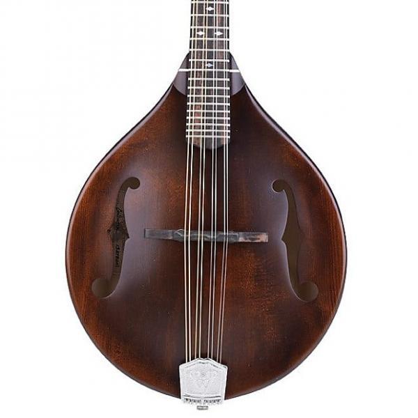 Custom Weber Gallatin A14-F Mandolin #1 image
