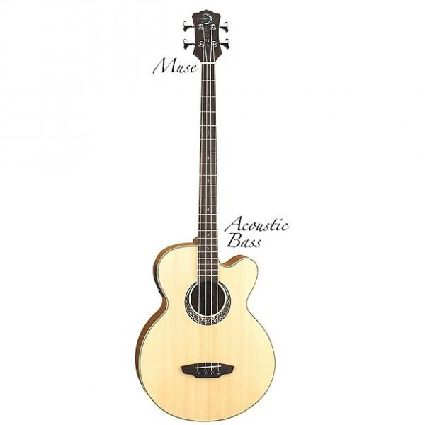 Custom Luna Muse Acoustic/Electric Bass, MUS BASS #1 image