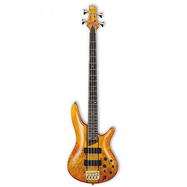 Custom Ibanez SR800 SR-Series Bass Guitar | Poplar Burl Top - Amber #1 image