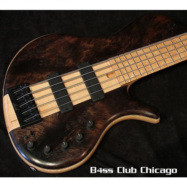Custom Elrick Platinum E-vo 5 Single Cut Redwood Burl #1 image