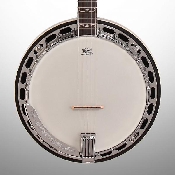Custom Washburn B16K Banjo #1 image
