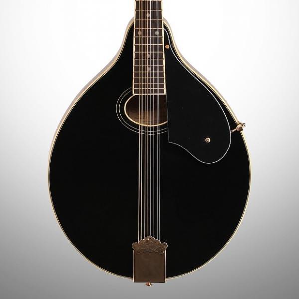 Custom Washburn M1SDL A-Style Mandolin #1 image
