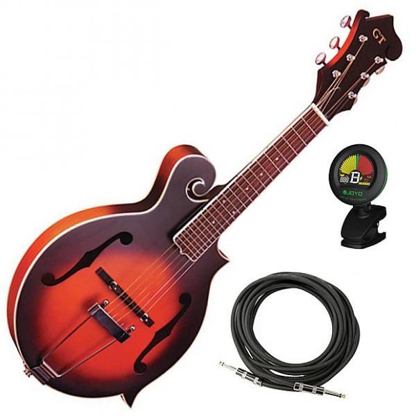 Custom Gold Tone F-6 Long Scale Manditar Mandolin-Guitar Bundle #1 image