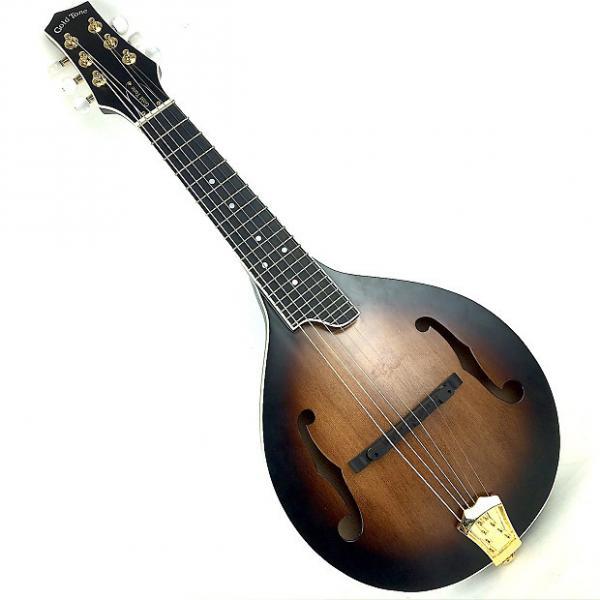 Custom Gold Tone GM-6+  6-String Mandolin w/ Pickup #1 image