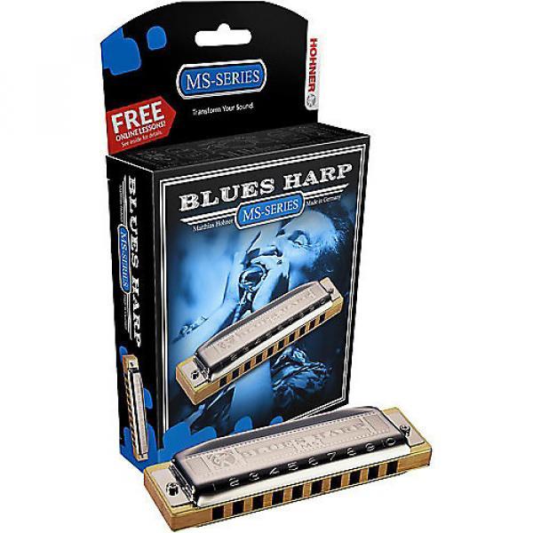 Custom Hohner Blues Harp Harmonica G #1 image