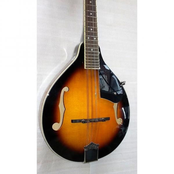 Custom Delta Blues Mandolin 2 Tone Sunburst #1 image