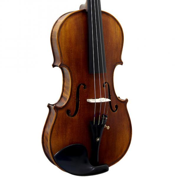 Custom Paititi 4/4 Size PTVNSH100 Premium Hand Carved Ebony Fitted Violin Outfit #1 image