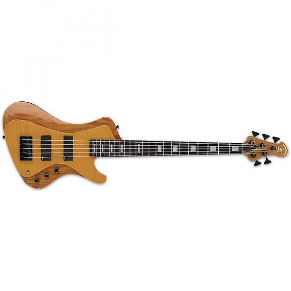 Custom ESP LTD STREAM-1005FM HN 5-String Stream Series Solid Flamed Maple Top Bass Guitar - Honey Natural Finish (LSTREAM1005FMHN) #1 image