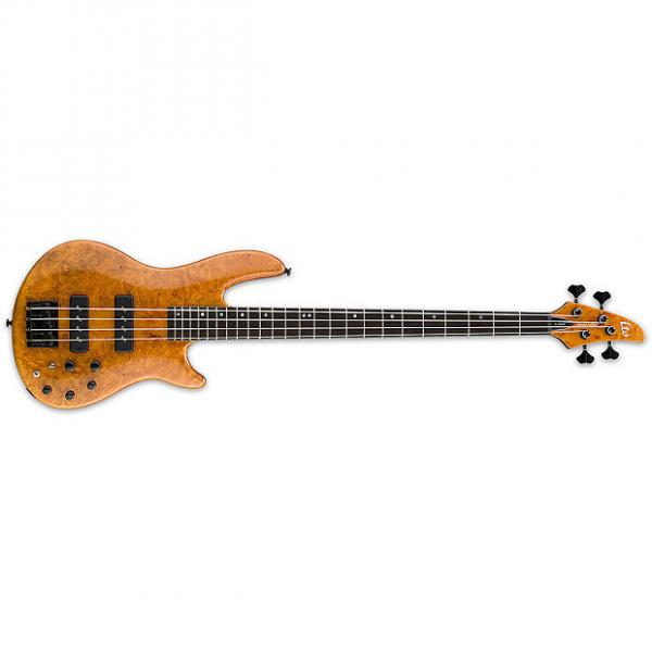 Custom ESP LTD H-1004SEBM HN 4-String H-Series Solid Burled Maple Top Bass Guitar - Honey Natural Finish (LH1004SEBMHN) #1 image