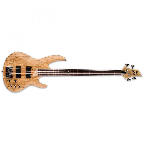 Custom ESP LTD B-204 Fretless B Series Bass Guitar 4-string Natural Satin Spalted Maple #1 image