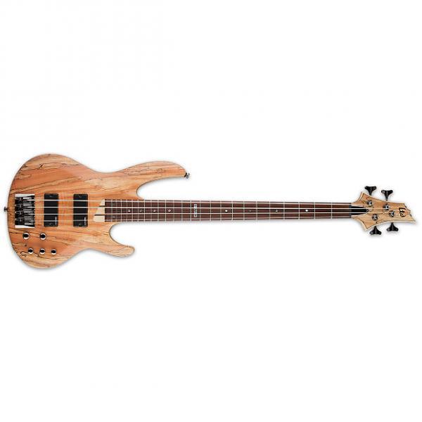 Custom ESP LTD B-204 B Series Bass Guitar 4-string Natural Satin Spalted Maple Top B204 #1 image
