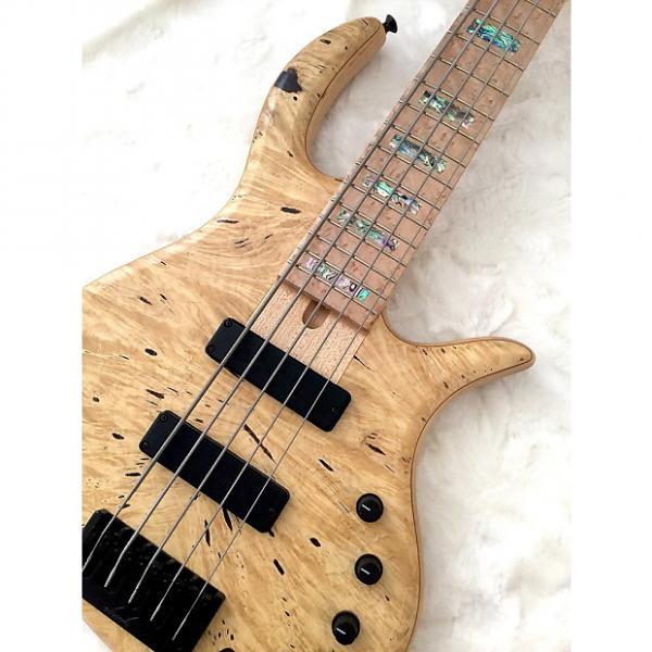 Custom Elrick e-Volution 5 Bass, Swamp Ash, Horse Chestnut, Birdseye Maple. #1 image