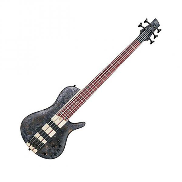 Custom Ibanez SRSC805DTF Bass Workshop 5-String Bass in Deep Twilight Flat Finish-Black/Gray #1 image
