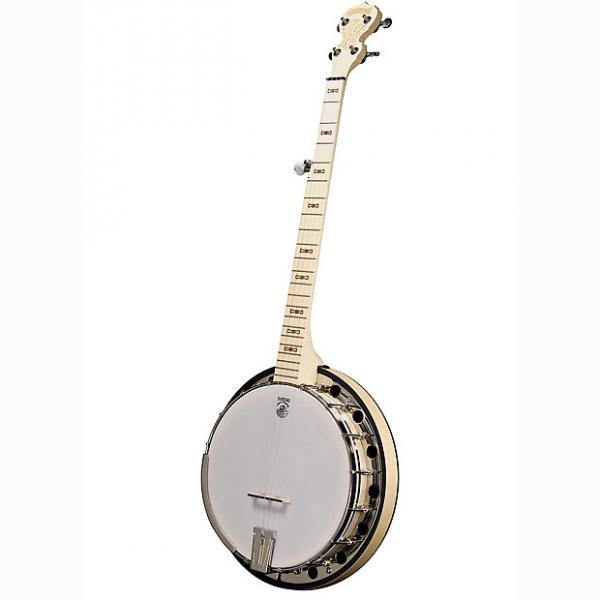Custom Deering Banjo Company Goodtime Special 5-String Banjo w/ Tonering & Resonator #1 image