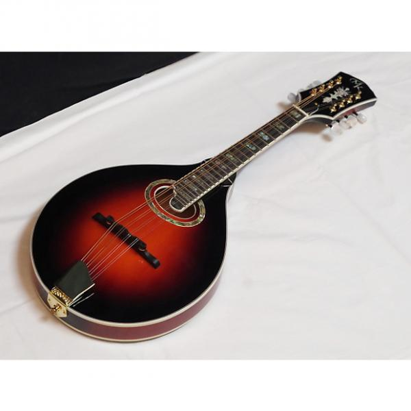 Custom MICHAEL KELLY A-O A-style Oval acoustic MANDOLIN new - Antique Tobacco Burst #1 image