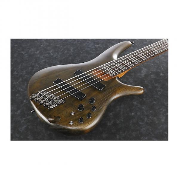 Custom Ibanez SRFF805  Walnut Flat 5-String Electric Bass #1 image