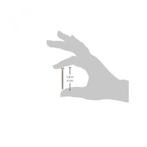 Fender Neck Mounting Screws - Chrome #3 image