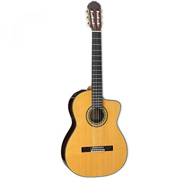 Takamine TH5C-KIT-2 Classical Nylon String Acoustic Guitar with Hard Case & ChromaCast Accessories #2 image