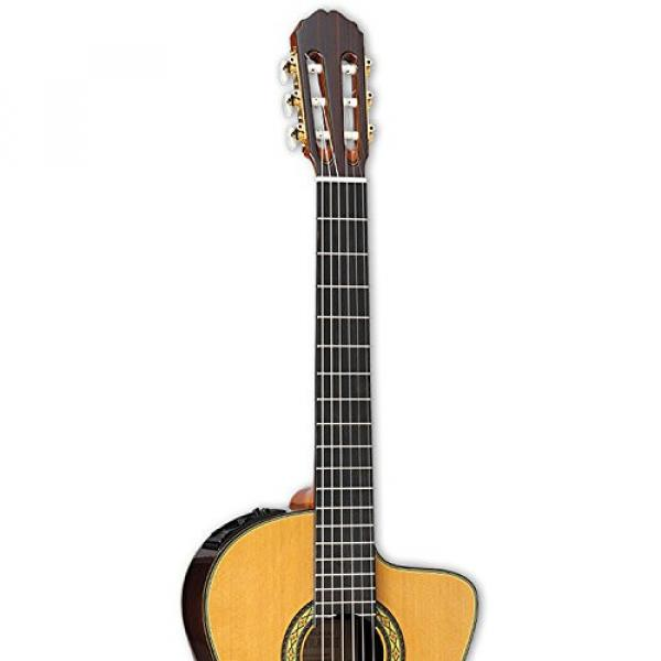 Takamine TH5C-KIT-2 Classical Nylon String Acoustic Guitar with Hard Case & ChromaCast Accessories #4 image