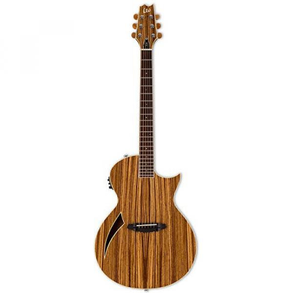 ESP martin LTL6ZNAT-KIT-2 acoustic guitar martin Thinline martin guitar accessories Series martin acoustic guitar strings TL-6Z martin guitar strings acoustic medium Acoustic-Electric Guitar, Natural Gloss #2 image