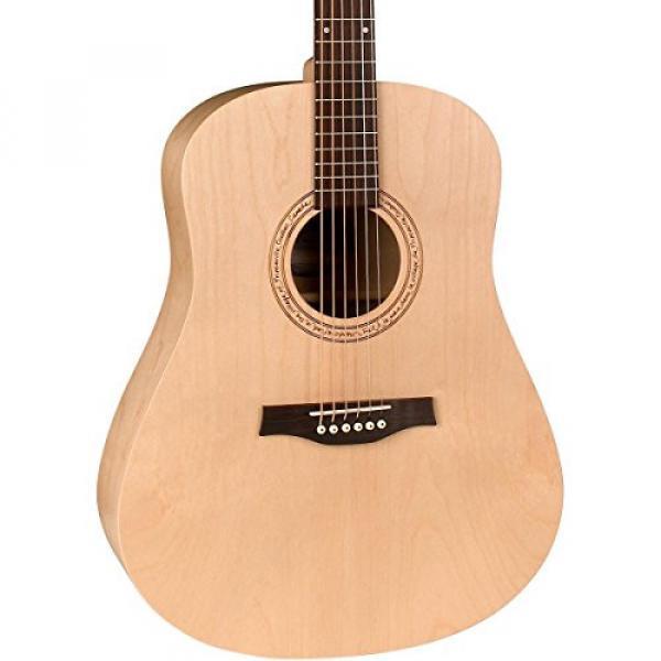 Godin Guitars 38763 Acoustic Guitar #1 image