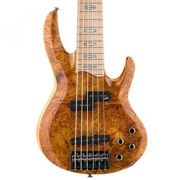 ESP LTD RB-1006BMHN Burled Maple Honey Natural 6 String Bass #3 image