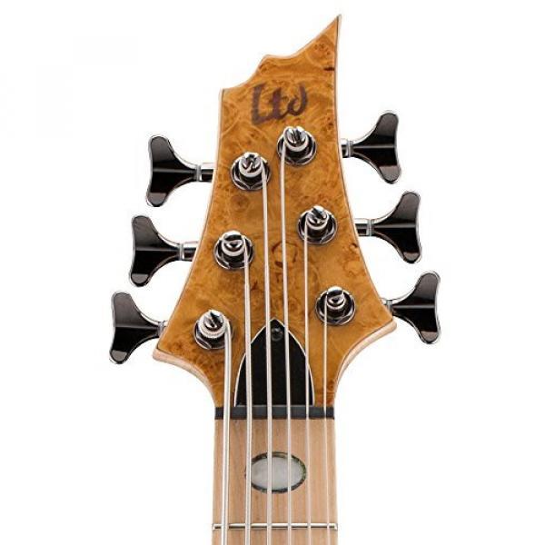 ESP LTD RB-1006BMHN Burled Maple Honey Natural 6 String Bass #4 image