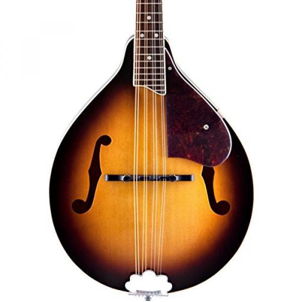 Gretsch G9300 New Yorker Standard Mandolin #1 image
