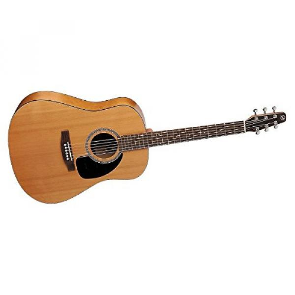 Seagull Acoustic Solid Cedar Top S6 Dreadnought Size #029396 w/Stand & More #2 image