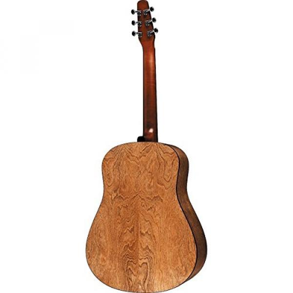 Seagull Acoustic Solid Cedar Top S6 Dreadnought Size #029396 w/Stand & More #4 image